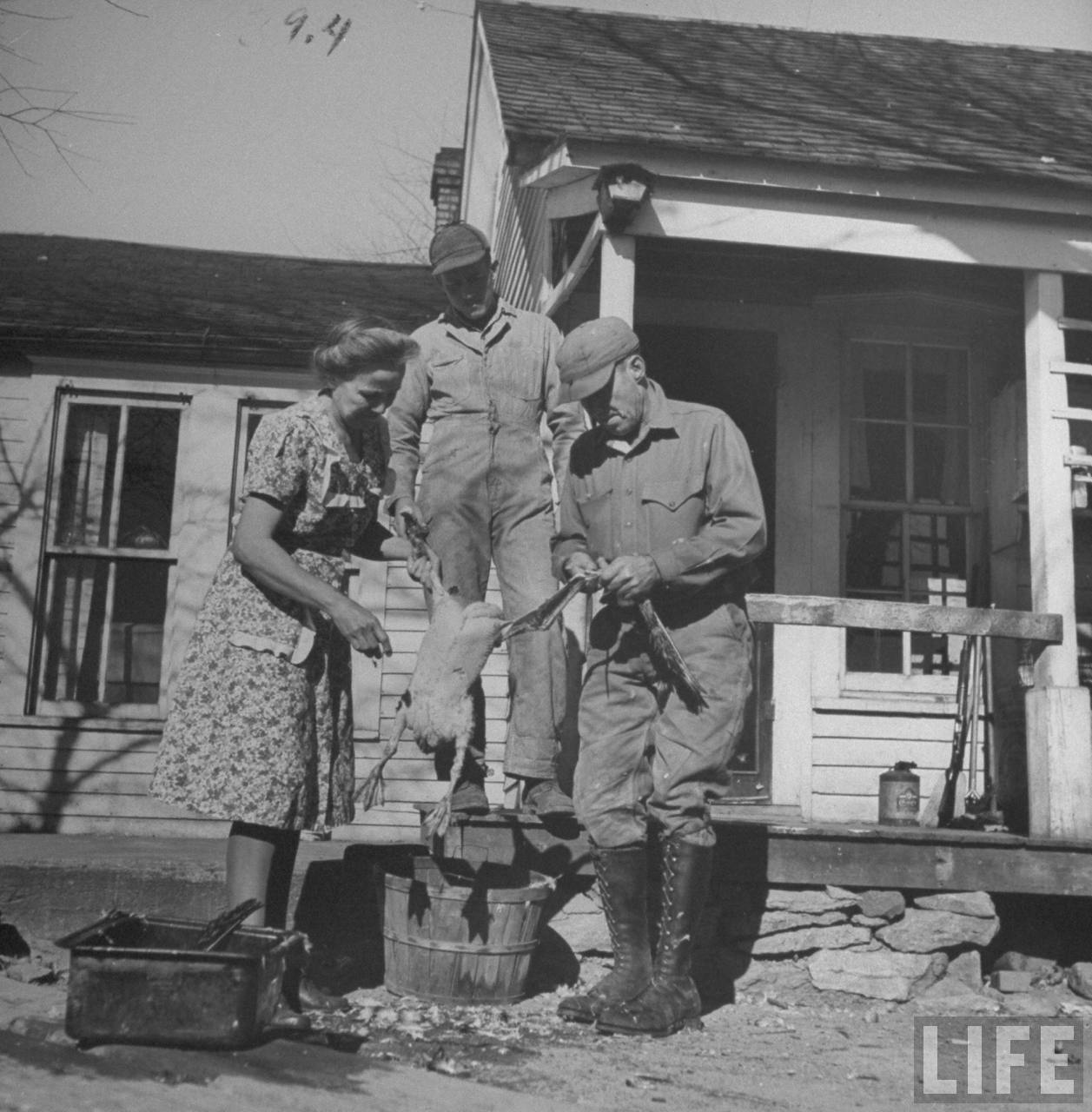 James F. Irwin (R), his wife and son preparing a goose for an early Christmas dinner to celebrate safe return of sons and sons-in-law from WW II.© Time Inc. Myron Davis